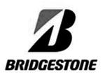 Bridgestone usuario cmms MPsoftware